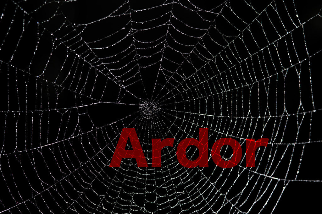 仮想通貨Ardor (アーダー:ARDR)とは