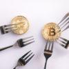 Bitcoin Platinum(ビットコインプラチナ)ハードフォーク延期(中止?)か